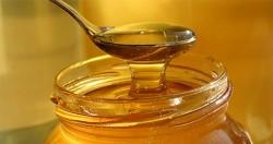 نگهداری عسل
